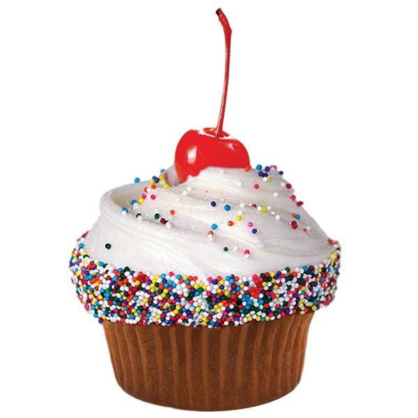 Caseys Confetti Cupcake